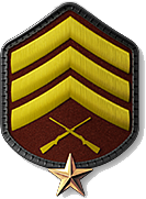 14 - Sergeant 1 Star (S2)