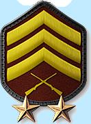 15 - Sergeant 2 Stars (S3)