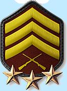 16 - Sergeant 3 Stars (S4)