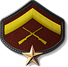 6 - Lance Corporal 1 Star (LC2)